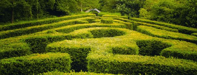 Saffron Walden Maze and Labyrinth Festival