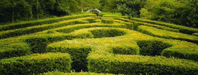 Saffron Walden Maze and Labyrinth Festival